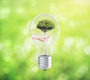 Eco concept idea with hand holding tree inside abstract lightbulb on green background. 3D Rendering